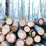 houtkorrels kopen voor de haard in grote hoeveelheden